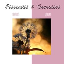 PARENTALITE ORCHIDEES PISSENLITS ARTICLE EMOTIONS STRESS ENFANTS HYPER